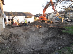 Japanese Knotweed treatment building site